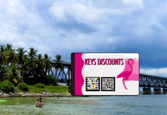 Florida Keys Dolphin Swim Discounts