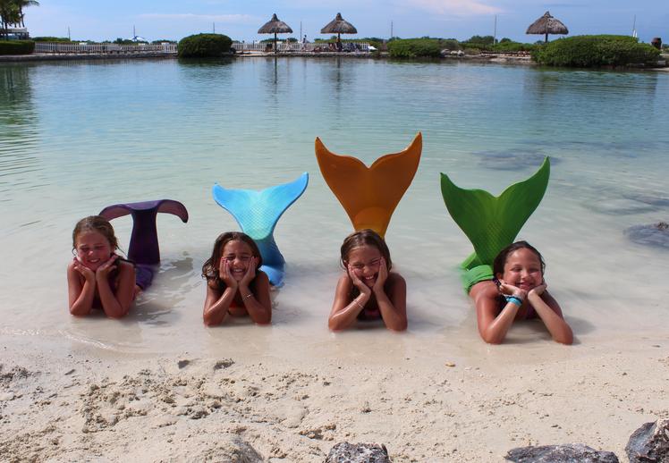 Florida Keys Dolphin FAQ