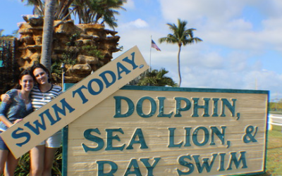 What You Need to Bring to the Florida Keys Dolphin Program