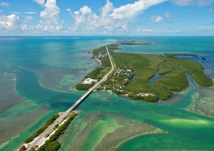 All Natural Dolphin Facility in the Keys