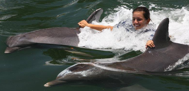 Best Florida Keys Dolphin swim program